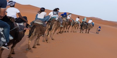 Private tours Morocco