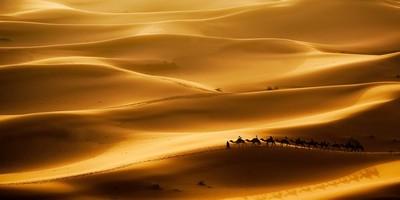 Morocco Casablanca desert tours