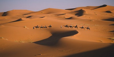 Trips from tangier to Marrakech